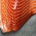 Skandl Arctic Salmon