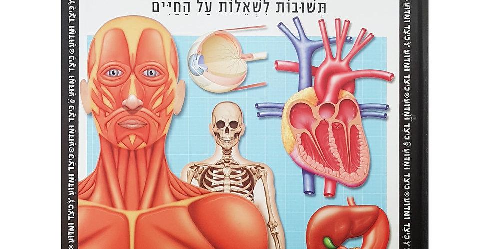גוף האדם תשובות לשאלות על החיים