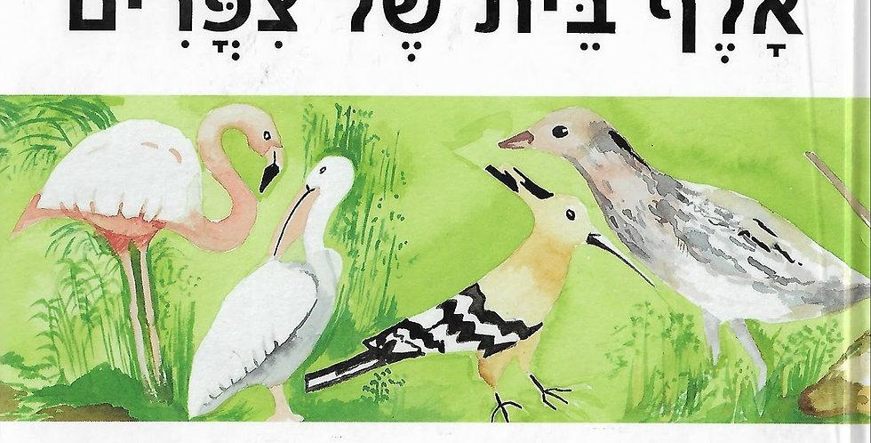 אלף בית של ציפורים