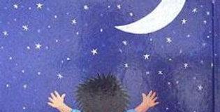 הילד שאהב את הירח