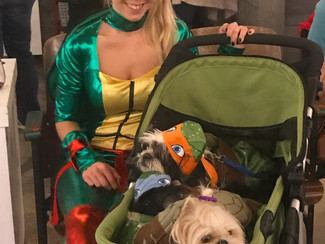 Dog-Friendly Halloween Event 2017
