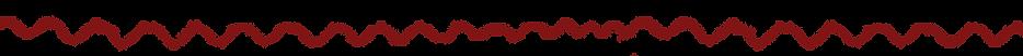 lijn onder logo site .png