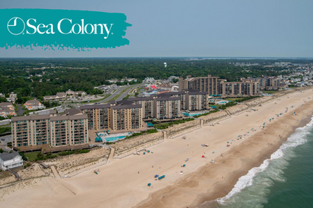 Sea Colony Update: Shoulder Season Updates to Operations (UPDATED 9/11)*