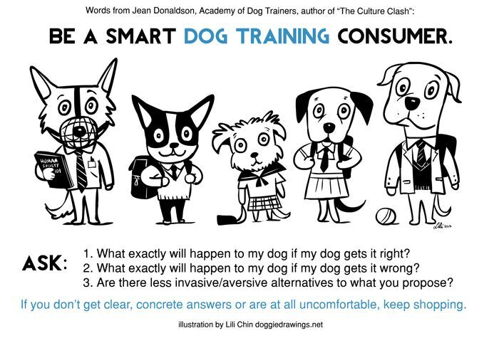 smart consumer.jpeg