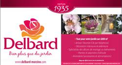 SJD 19 Delbard