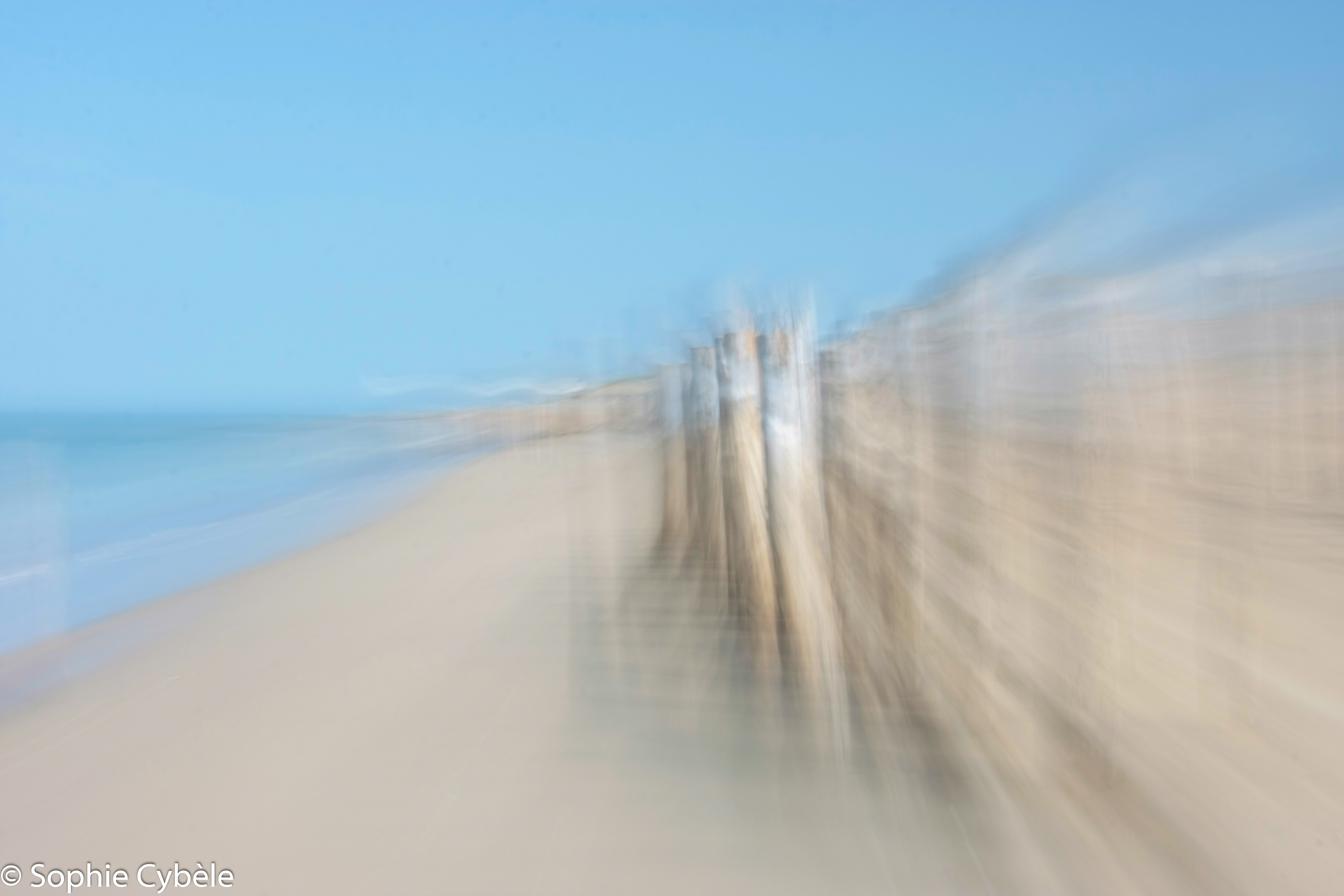 Pieux et dunes