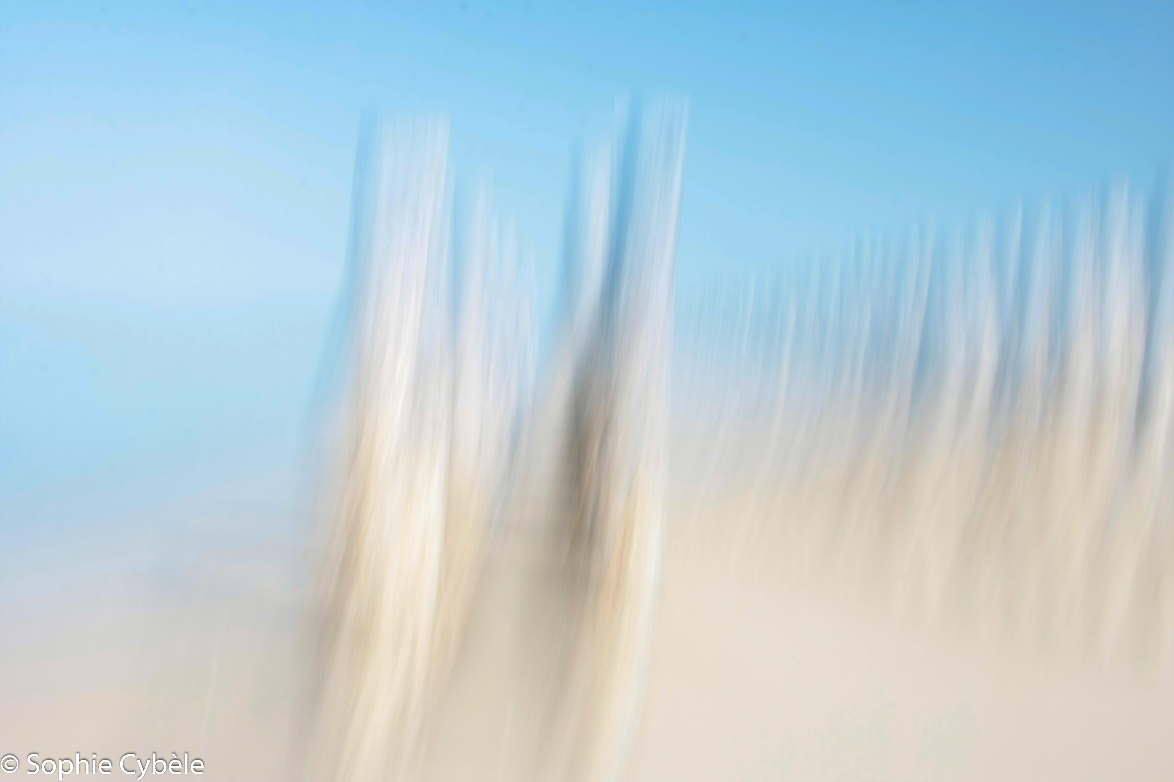 Pieux et Dunes 3