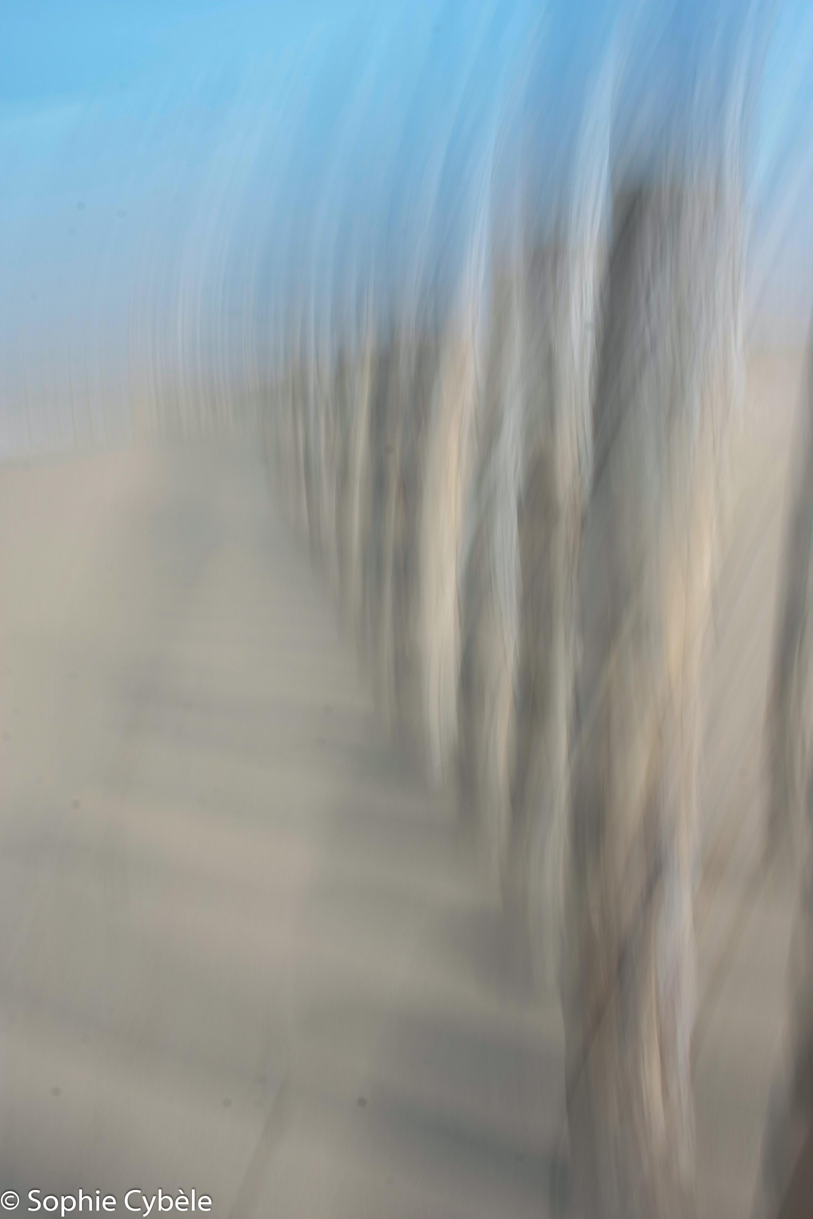 Pieux et Dunes 2