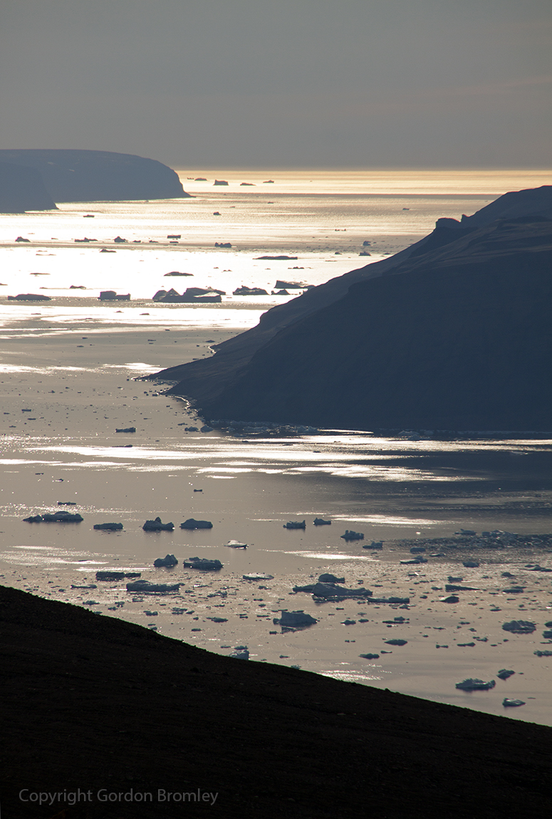 icebergs in Wolstenholme Fjord