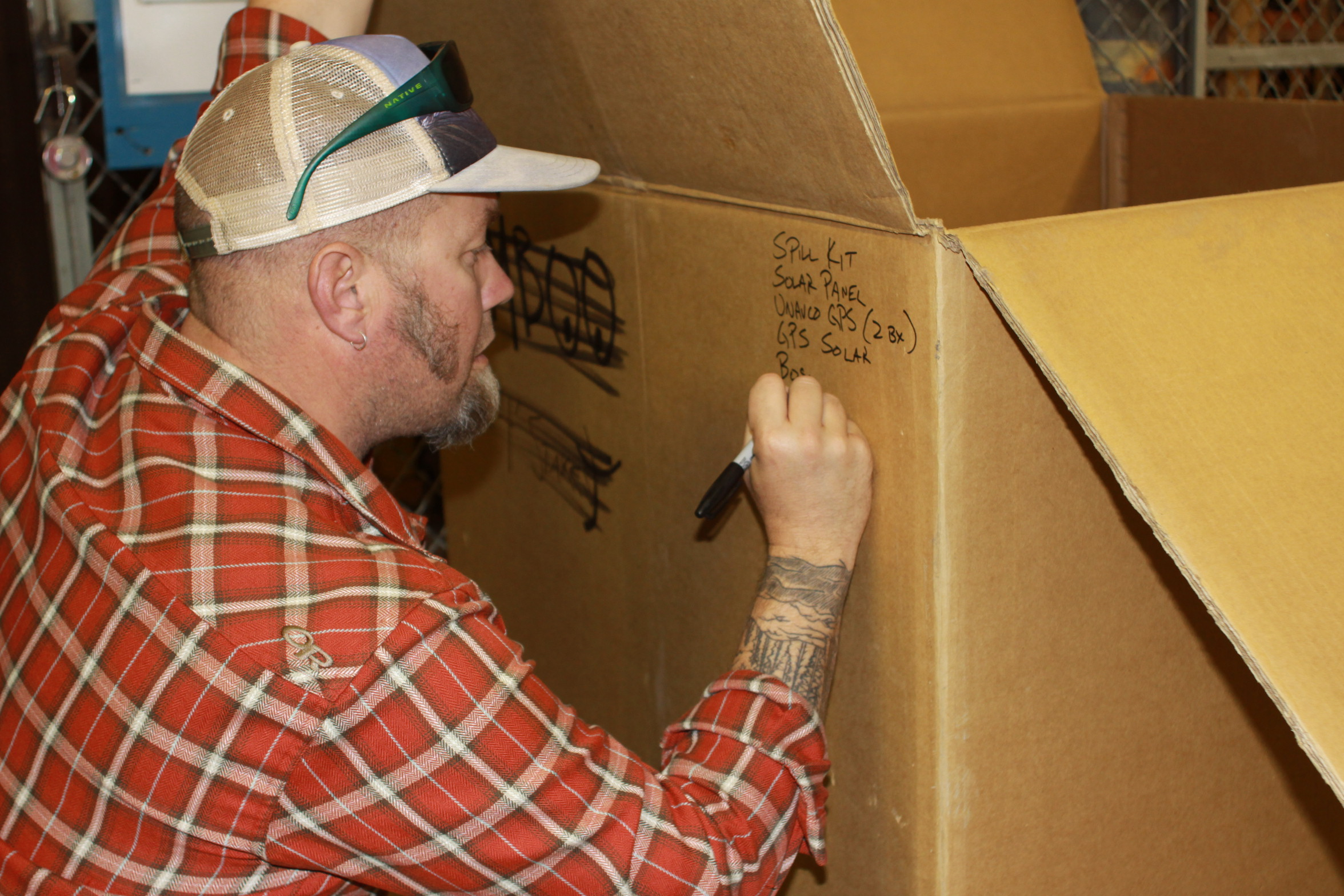 Chris cataloguing