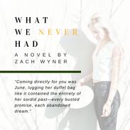 2- Zack Wyner - Post 4.png