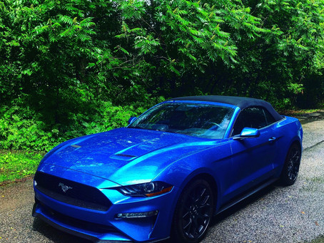 2019 Ford Mustang GT & Convertible Ecoboost