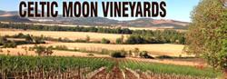Celtic Moon Vineyards