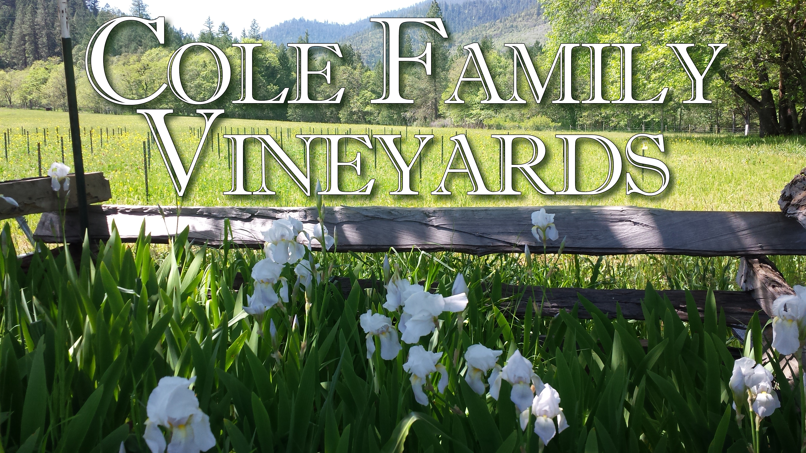 Cole Family Vineyards