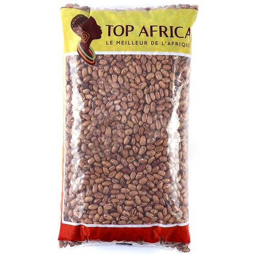 HARI0034 TOP AFRICA HARICOTS BORLOTTI SECS 5KG
