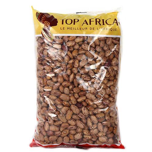 HARI0033 TOP AFRICA HARICOTS SECS BORLOTTI COCOS ROSES 1KG