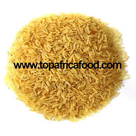 PROTEGE ZOOM RICE0075 KING AFRICAN RIZ B