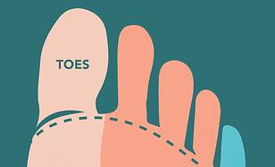 foot_illustration.png