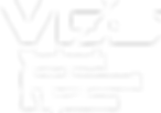 vds-logo.png
