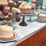 Cake & Cupcake Display Case