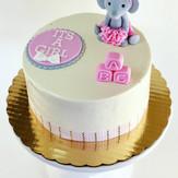 Girl Elephant Baby Shower Cake