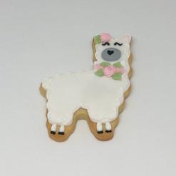 Lllama Cookies
