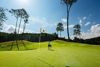 golf and simulator.jpg