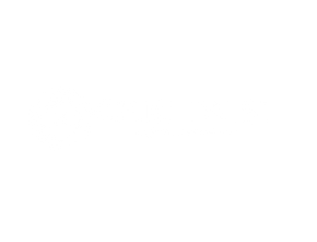 20070b6d7e0 Chic Twist    Bazar seminuevos mujer