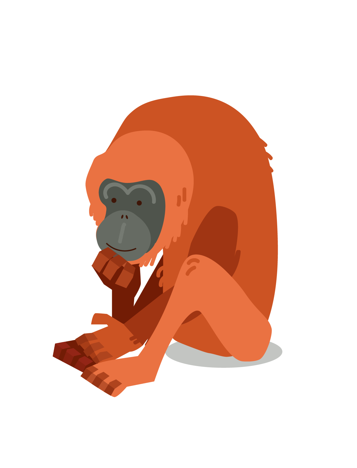 Orangutan -01 copy