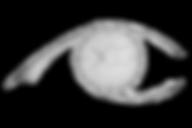 Premier Retina Specialists