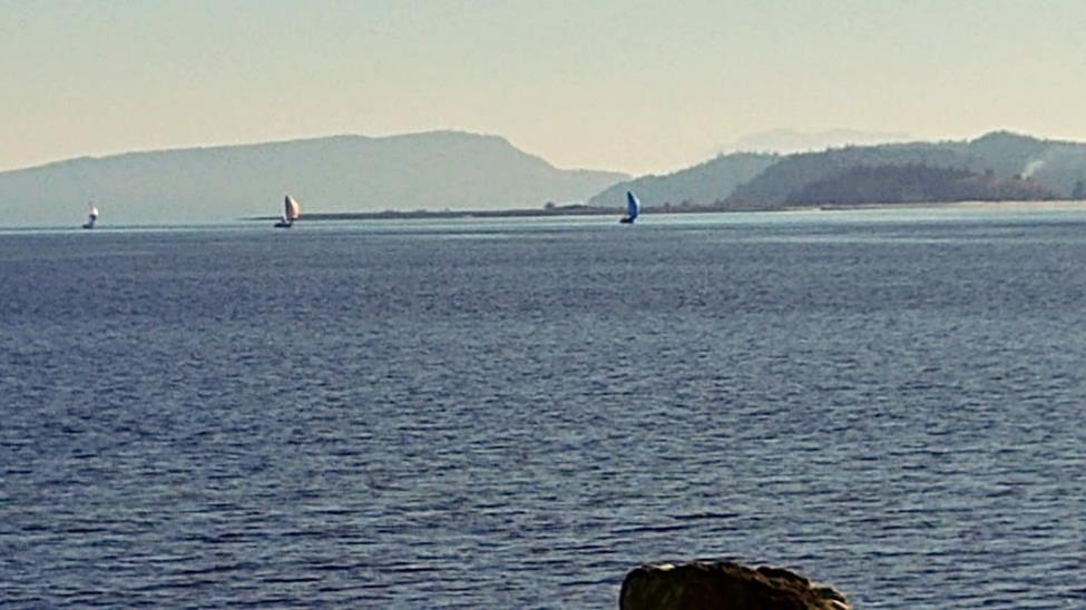 Wind in the sails near Tree Island - Bon
