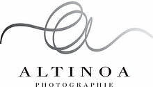 LOGO ALTINOA.png