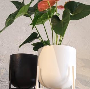 Cache-pot sur pattes blanc ou noir