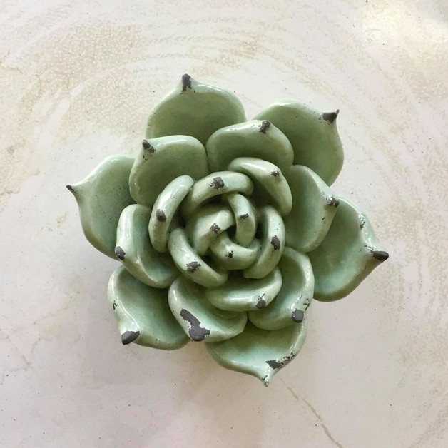 Fleur de lotus décorative