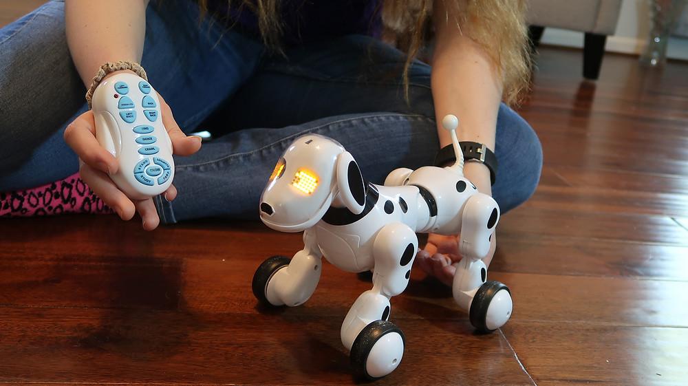 Leoking Robot Dog