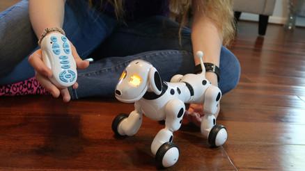 Robot Dog - Leoking!