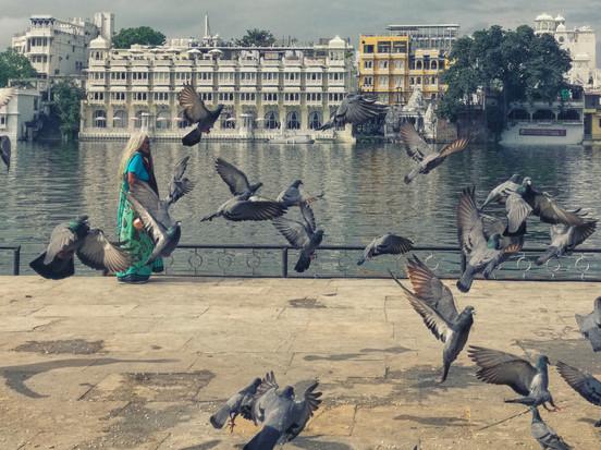 Udaipur-2-2.jpg