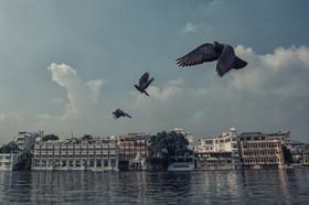 Udaipur-8.jpg
