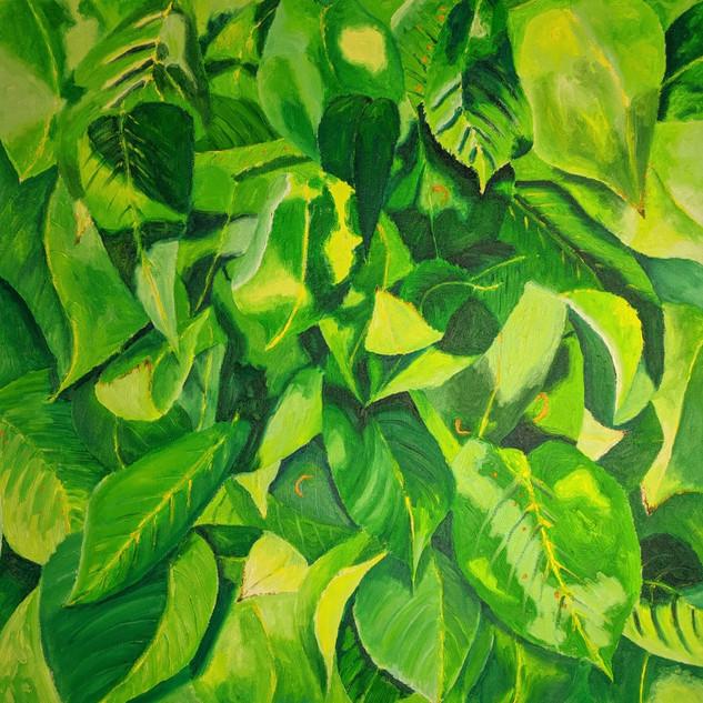 Sunshine on Leaves, oil on canvas