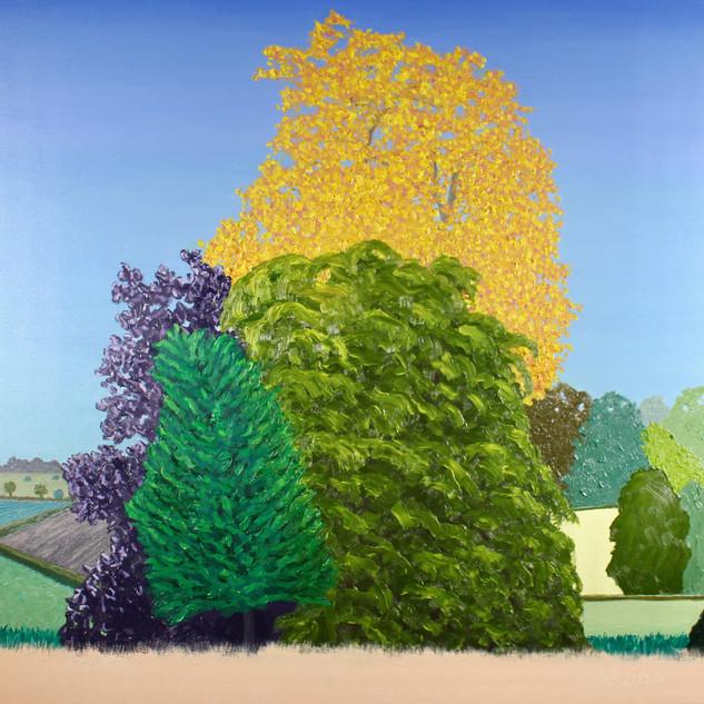 Autumn Trees, oil on canvas, 60 x 60 cm