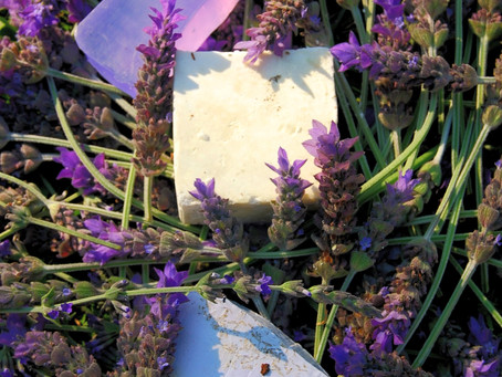 Lavender, what are the benefits?