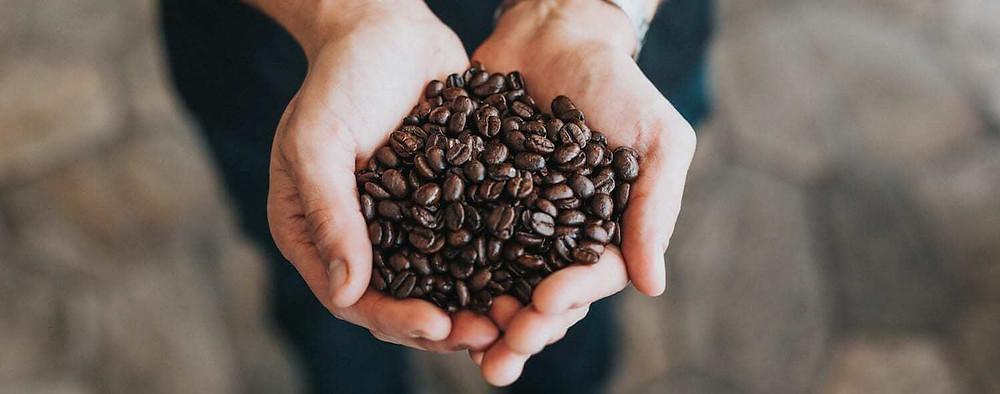 vốc hạt cà phê đựng trong lòng bàn tay