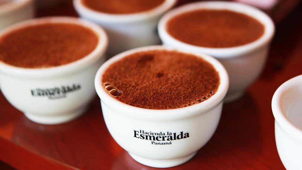 cafe Hacienda La Esmeralda từ Panama