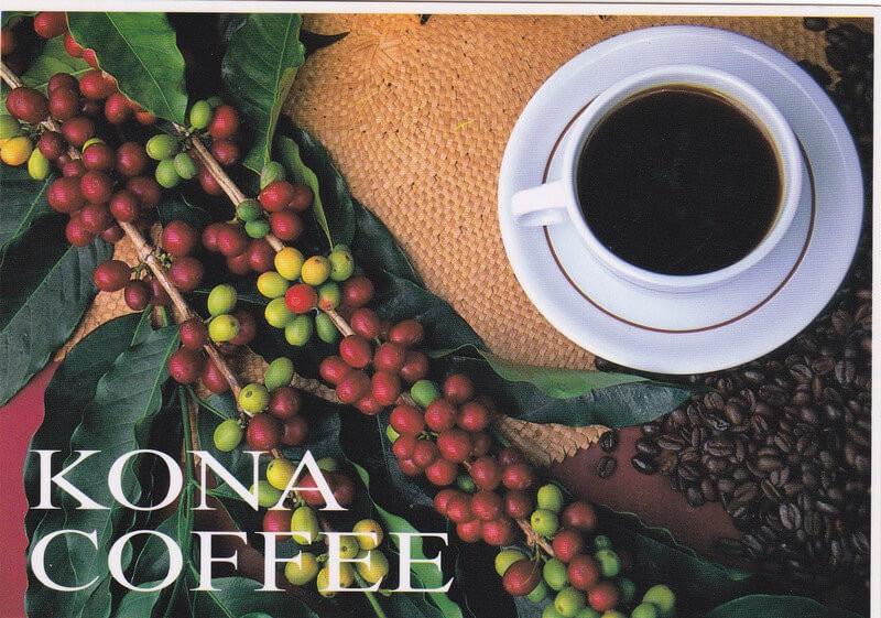 cafe Kona ở Hawaii