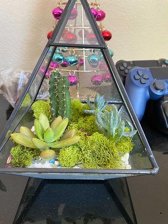 Raised Glass Terrarium.JPG