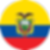 ecuador-flag-round-icon-256.png