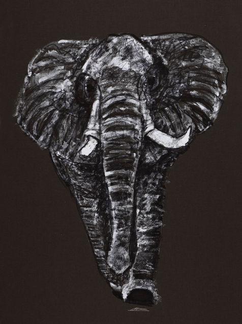 Elephant Artwork Print by Celio Bordin