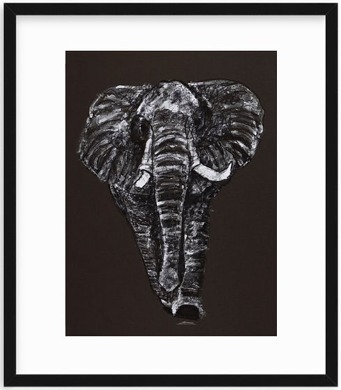 Elephant Artwork print by Celio Bordin