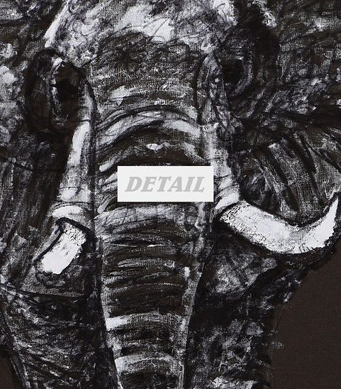 Detail of Elephant - Artwork print by Celio Bordin