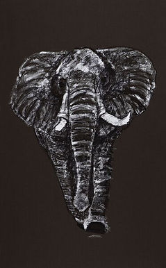 Elephant drawing by Celio Bordin